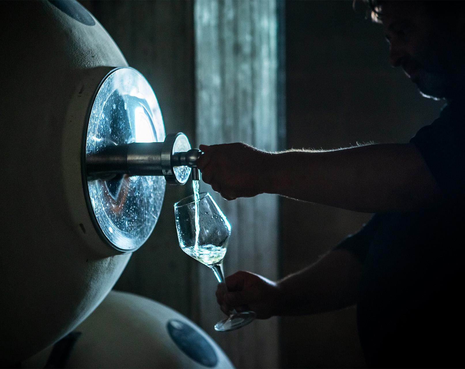 fermentazione spontanea vino 1
