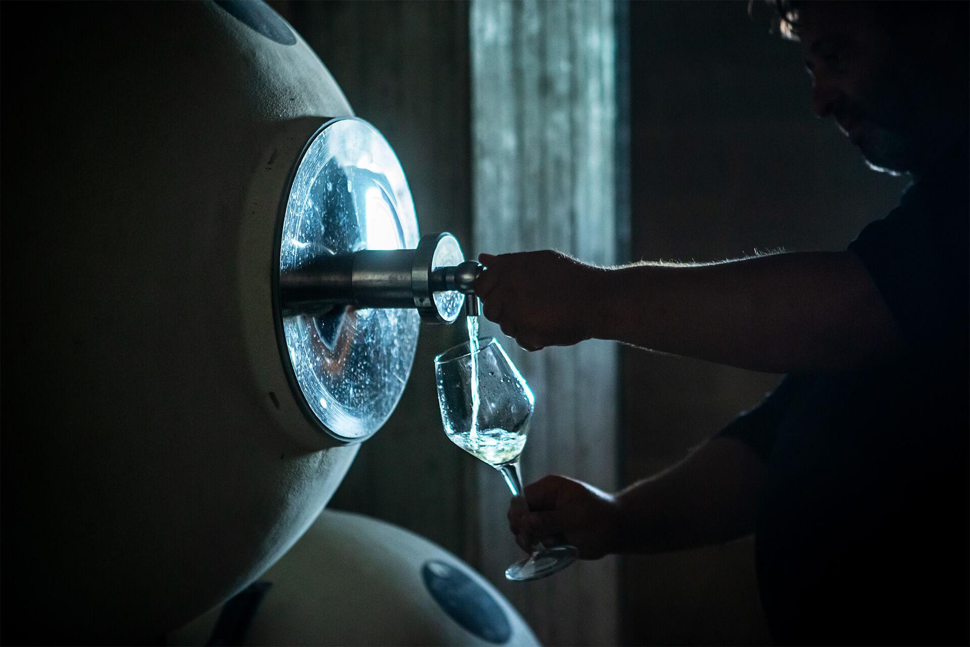 fermentazione spontanea vino