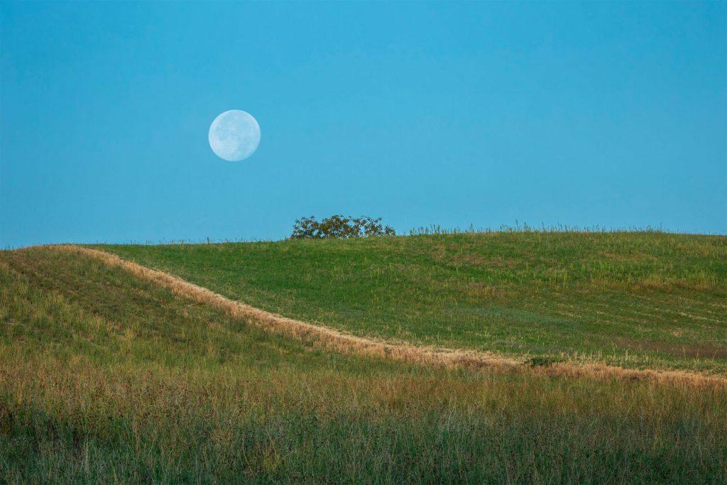 un-approccio-olistico-luna